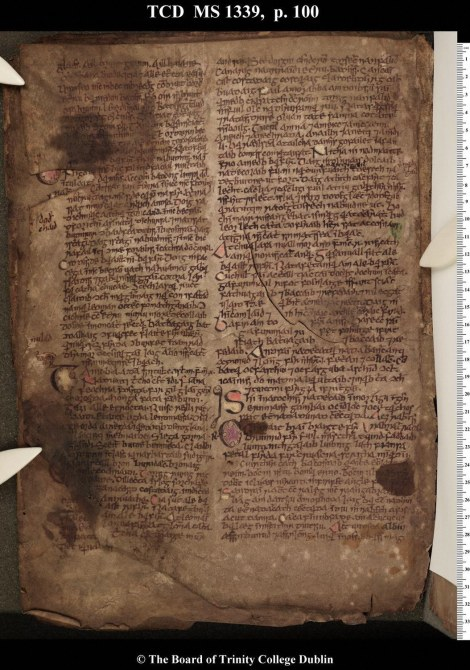 A Folio from the Book of Leinster
